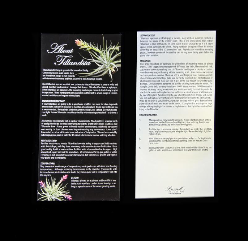 Care Brochure